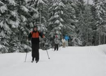 Cross-Country Skiing Fairmont