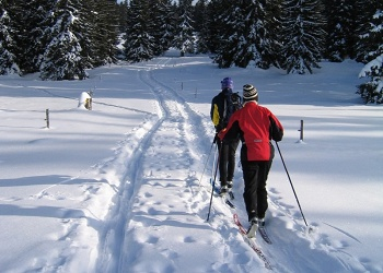 Cross-Country Skiing Radium